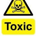 Toxic Short Boy