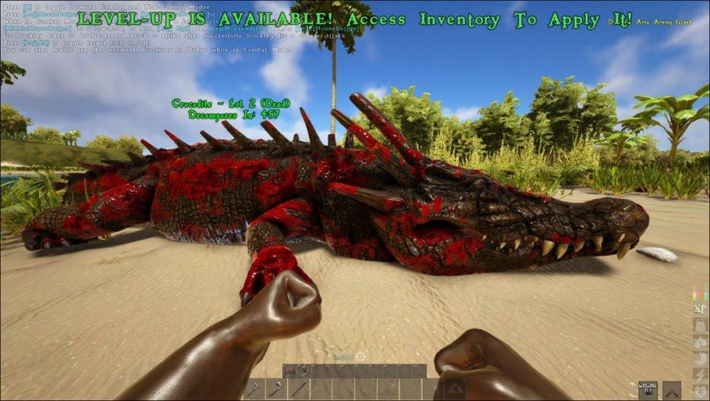 dead croc.jpg