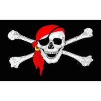 The Pirates Code